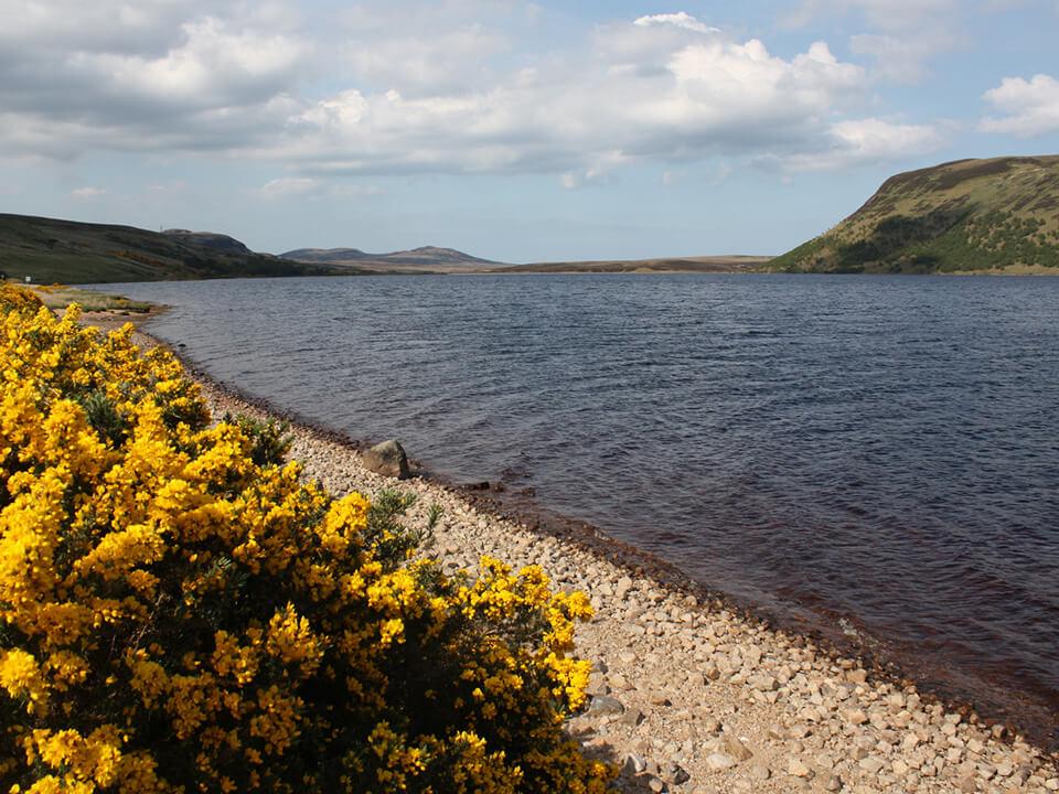 Fishing on Loch Loyal
