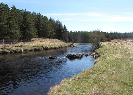Fly Fishing on the River Mallart